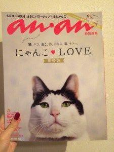 【速報】『anan特別編集 にゃんこLOVE 新装版』購入しました♥