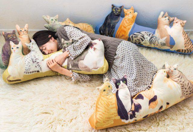 自宅で猫ハーレム!ねこを飼えない人必見の画期的クッション登場