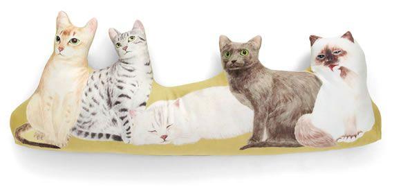エキゾティックなアジア・中東猫