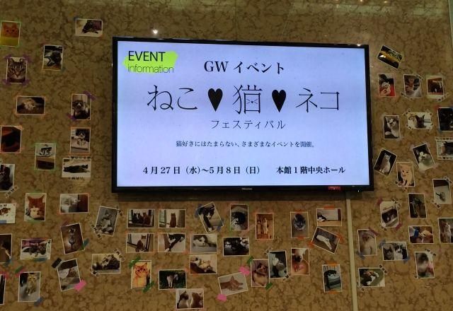 日本橋三越「ねこ・猫・ネコ フェスティバル」PECO NEKO館レポート<GWねこ祭り②>