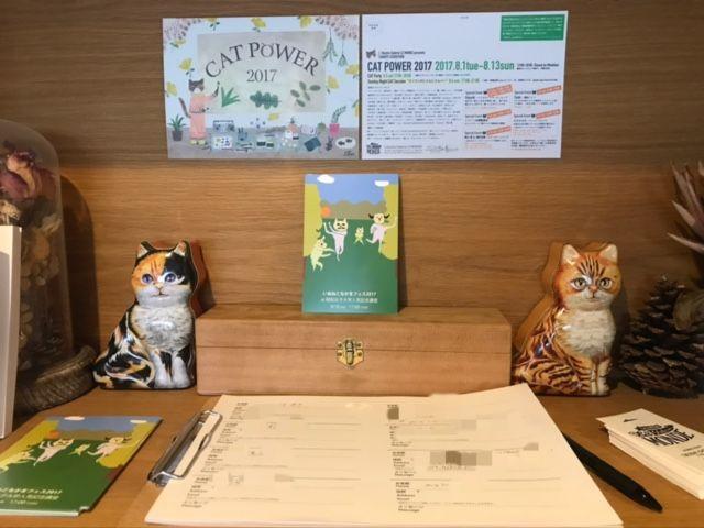 CAT POWER 2017